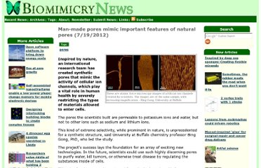 http://www.biomimicrynews.com/research/Man-made_pores_mimic_important_features_of_natural_pores.asp