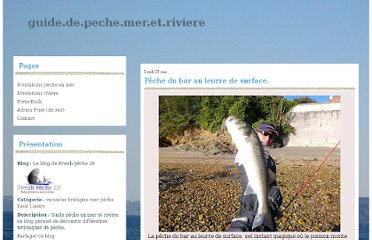 http://guidedepechemeretriviere.over-blog.com/article-peche-du-bar-au-leurre-de-surface-74453270.html