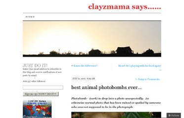 http://clayzmama.com/2012/07/21/best-animal-photobombs-ever/