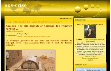 http://sos-crise.over-blog.com/article-l-usage-du-bio-digesteur-un-biogaz-allege-les-travaux-menagers-94958535.html