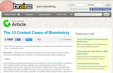http://brainz.org/15-coolest-cases-biomimicry/
