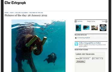 http://www.telegraph.co.uk/news/picturegalleries/picturesoftheday/9041104/Pictures-of-the-day-26-January-2012.html?image=4