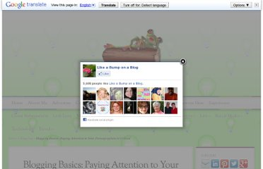 http://www.amberrisme.com/2012/08/01/blogging-basics-paying-attention-to-your-demographics-is-critical/