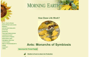 http://www.morning-earth.org/Graphic-E/SymbiosisAnts.html