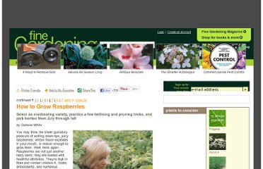 http://www.finegardening.com/plants/articles/reliable-raspberries.aspx