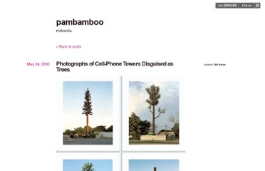 http://pambamboo.posterous.com/photographs-of-cell-phone-towers-disguised-as