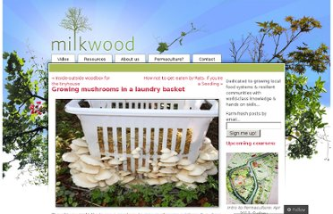 http://milkwood.net/2012/08/12/growing-mushrooms-in-a-laundry-basket/
