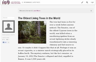 http://io9.com/5886738/what-a-charred-ancient-tree-can-teach-us-about-our-place-in-the-universe