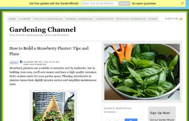 http://www.gardeningchannel.com/how-to-build-a-strawberry-planter-tips-and-plans/