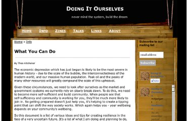http://www.doingitourselves.org/what-you-can-do#micro-business