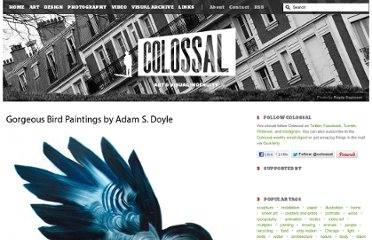 http://www.thisiscolossal.com/2012/09/gorgeous-painted-birds-by-adam-s-doyle/