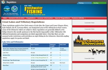 http://www.eregulations.com/newyork/fishing/great-lakes-and-tributary-regulations/