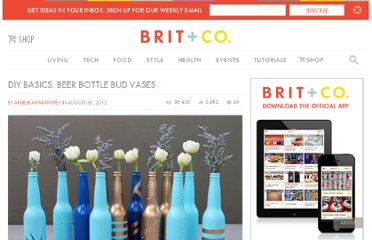 http://www.brit.co/diy-basics-beer-bottle-bud-vases/