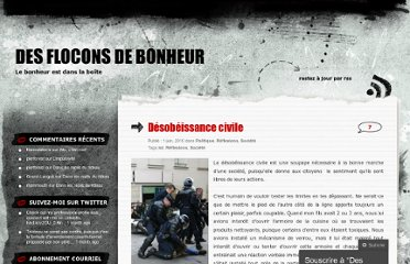 http://floconsdebonheur.wordpress.com/2010/06/01/desobeissance-civile/