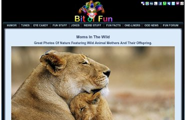 http://www.bitoffun.com/fun_stuff/wild-animals-and-offspring.html