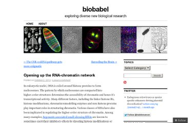 http://biobabel.wordpress.com/2012/10/02/opening-up-the-rna-chromatin-network/