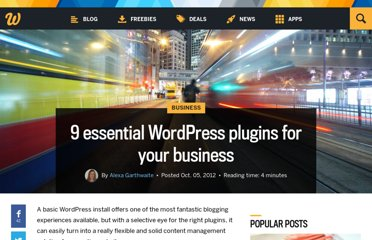 http://www.webdesignerdepot.com/2012/10/9-essential-wordpress-plugins-for-your-business/