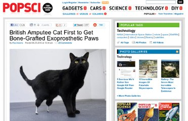http://www.popsci.com/technology/article/2010-06/british-amputee-cat-first-get-bone-grafted-exoprosthetic-paws
