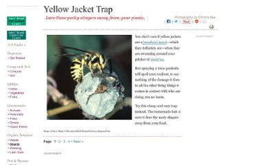 http://www.organicgardening.com/learn-and-grow/yellow-jacket-trap