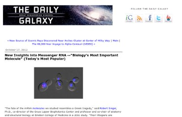 http://www.dailygalaxy.com/my_weblog/2012/10/new-insights-into-messenger-rna-biologys-most-important-molecule-todays-most-popular.html