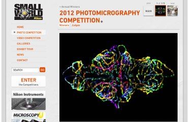 http://www.nikonsmallworld.com/galleries/entry/2012-photomicrography-competition/1