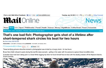 http://www.dailymail.co.uk/news/article-2222419/Thats-bad-fish-Real-life-Jaws-scenario-ill-tempered-shark-circles-photographers-boat-hours.html