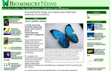 http://www.biomimicrynews.com/research/How_butterfly_wings_can_inspire_new_high-tech_surfaces.asp
