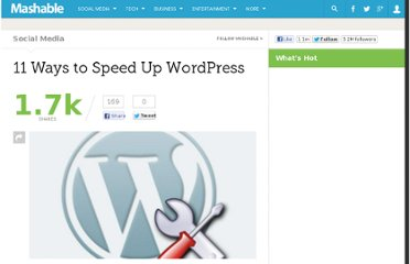 http://mashable.com/2010/07/19/speed-up-wordpress/