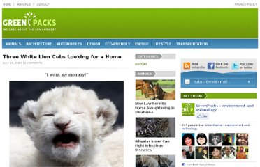 http://www.greenpacks.org/2008/07/16/3-white-lion-cubs-looking-for-a-home/