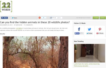http://twentytwowords.com/2012/12/28/can-you-find-the-hidden-animals-in-these-20-wildlife-photos/