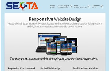 http://www.seota.com/Website-Development/web-design.html