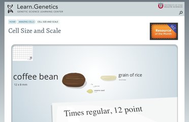 http://learn.genetics.utah.edu/content/begin/cells/scale/