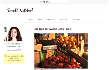 http://smallnotebook.org/2009/07/14/20-tips-to-waste-less-food/