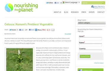 http://blogs.worldwatch.org/nourishingtheplanet/celosia-nature%e2%80%99s-prettiest-vegetable/