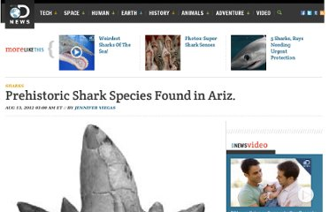 http://news.discovery.com/animals/sharks/prehistoric-shark-species-arizona-120813.htm