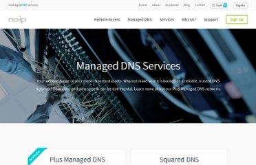 http://www.noip.com/services/managed_dns/plus_dynamic_dns.html