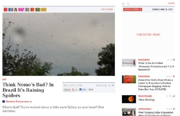 http://gawker.com/5982891/meanwhile-in-brazil-its-raining-spiders