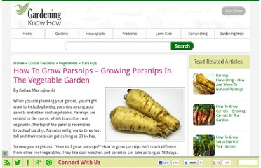 http://www.gardeningknowhow.com/edible/vegetables/parsnips/how-to-grow-parsnips.htm