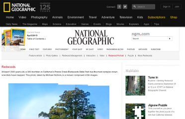 http://ngm.nationalgeographic.com/redwoods/gatefold-image