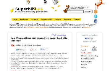 http://www.superbibi.net/web-marketing/les-55-questions-que-devrait-se-poser-tout-site-internet