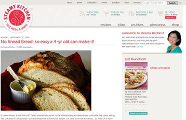 http://www.steamykitchen.com/168-no-knead-bread-revisited.html