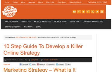 http://www.tribalcafe.co.uk/10-step-guide-to-develop-a-killer-online-strategy/