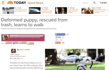 http://today.com/id/44617504/ns/today-good_news/t/deformed-puppy-rescued-trash-learns-walk/#.UVex4dGI70N