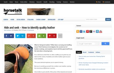 http://horsetalk.co.nz/2012/10/23/hide-and-seek-how-to-identify-quality-leather/