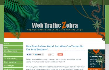 http://www.webtrafficzebra.com/how-does-twitter-work.html#.UVjO1NGI70O