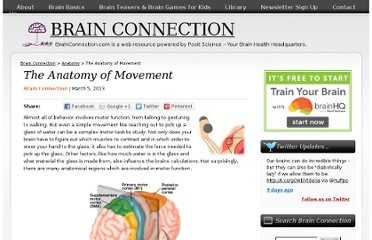 http://brainconnection.positscience.com/the-anatomy-of-movement/