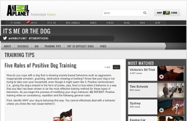 http://animal.discovery.com/tv-shows/its-me-or-the-dog/training-tips/positive-dog-training.htm