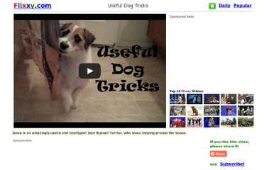 http://www.flixxy.com/useful-dog-tricks.htm#.UV1Wo9GI70M