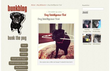http://bunkblog.net/dog-behavior/dog-intelligence-test