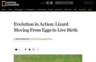 http://news.nationalgeographic.com/news/2010/09/100901-science-animals-evolution-australia-lizard-skink-live-birth-eggs/